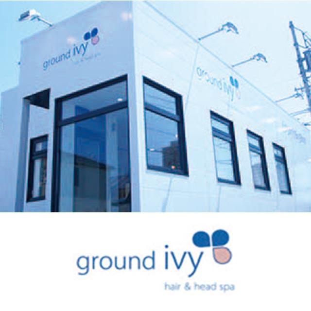 ground ivy